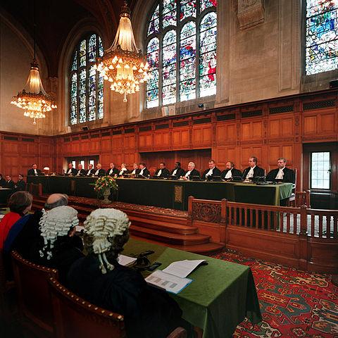 den internationale domstol