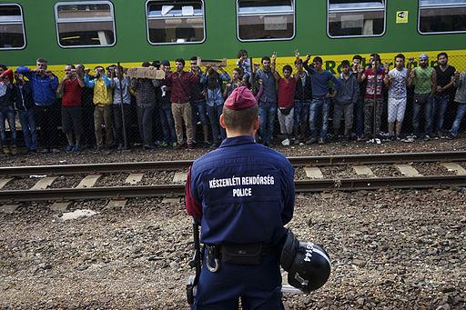 Flygtninge i Ungarn i august sidste år Foto: Mstyslav Chernov
