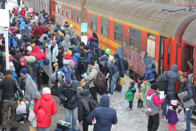 Migranter ankommer til den makedonske transitlejr i Tabanovce Foto: Ota Tiefenböck